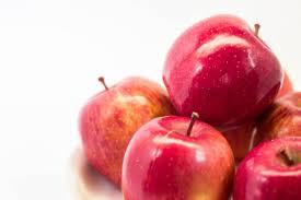 りんごたん