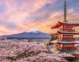 2 Weeks in Japan Itinerary: Complete Guide for First-Timers