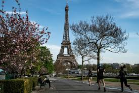 French economy shrinks 6% in Q1: Bank of France